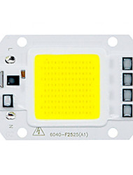 cheap -1pc 50W Utral Bright LED COB Chip 110V 220V Input Smart IC for DIY LED Flood Light Warm Cold White