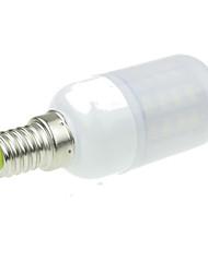 cheap -3W 3000-3500/6000-6500lm E14 LED Globe Bulbs 40 LED Beads SMD 5630 Decorative Warm White / Cold White 220-240V / RoHS