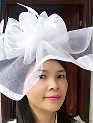 cheap -Feather / Net Fascinators / Hats / Birdcage Veils with 1 Wedding / Special Occasion / Casual Headpiece