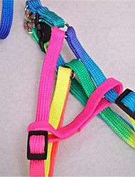 cheap -Dog Leash Adjustable / Retractable Rainbow Nylon Rainbow