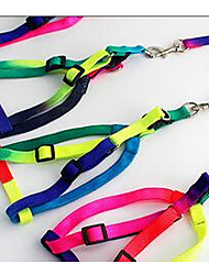 cheap -Dog Leash Adjustable / Retractable Solid Colored Nylon Small Dog Rainbow