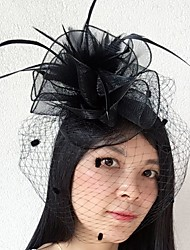 cheap -Feather / Net Fascinators / Birdcage Veils with 1 Wedding / Special Occasion Headpiece