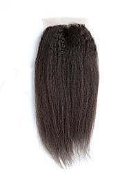 Недорогие -Бразильские волосы 4x4 Закрытие Классика / Естественные прямые Бесплатный Часть / Средняя часть / 3 Часть Швейцарское кружево Натуральные волосы Повседневные