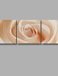 cheap -Stretched Canvas Print Floral/Botanical Modern,Three Panels Canvas Horizontal Print Wall Decor For Home Decoration