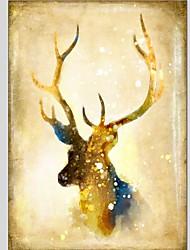 cheap -Print Stretched Canvas Prints - Animals Classic Modern Art Prints