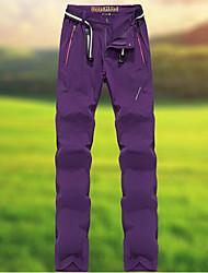 cheap -Men's Hiking Pants Summer Outdoor Breathable Quick Dry Sweat-wicking Wear Resistance Elastane Pants / Trousers Bottoms Camping / Hiking Fishing Climbing Yellow Hunter Green Regency L XL XXL XXXL 4XL