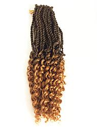 Недорогие -Волосы для кос Кудрявый Pre-петлевые вязания крючком плетенки Накладки из натуральных волос 100% волосы канекалона Kanekalon 30 корней / пакет косы волос Омбре Повседневные