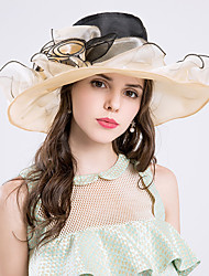 cheap -Silk / Organza Kentucky Derby Hat / Hats with 1 Wedding / Special Occasion / Party / Evening Headpiece