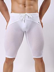 abordables -Homme Maille Sportif Rubans Blanc Noir Gris Shorts de Surf Bas Maillots de Bain - Couleur Pleine M L XL Blanc / Taille basse