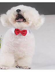 cheap -Dog Tie / Bow Tie Dog Clothes Solid Colored Red Cotton Costume For Spring &  Fall Summer Men's Women's Wedding