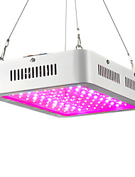 cheap -LED Plant Growing Light Fixture 85-265V 280W 200-2300 lm 100 LED Beads High Power LED Warm White Red Blue RoHS CCC 1 pc