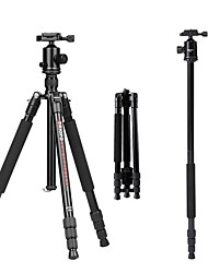 cheap -Aluminum-magnesium alloy 50 mm 4 sections Nikon / Canon Tripod