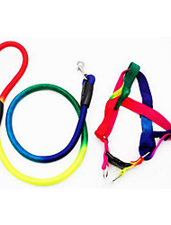 cheap -Harness Leash Portable Adjustable Safety Rainbow Nylon