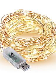 Недорогие -10 м Гирлянды 100 светодиоды SMD 0603 1шт Тёплый белый / Белый / Разные цвета Декоративная Работает от USB / IP65