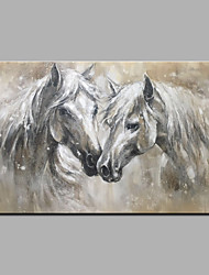 cheap -Oil Painting Hand Painted - Animals Animals Modern Rolled Canvas