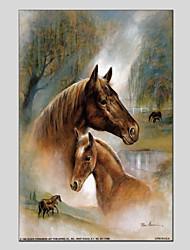 cheap -Print Stretched Canvas Prints - Animals Animals Art Prints
