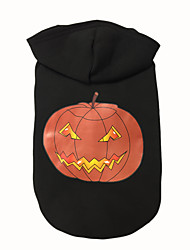 cheap -Dog Hoodie Dog Clothes Pumpkin Black Cotton Costume For Spring &  Fall Winter Men's Women's Halloween