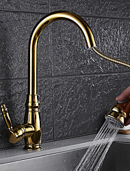 cheap -Kitchen faucet - Contemporary Ti-PVD Pull-out / ­Pull-down Vessel / Brass / Single Handle One Hole