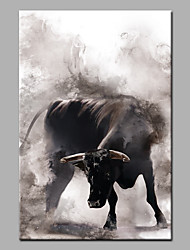 cheap -Oil Painting Hand Painted - Animals Modern Rolled Canvas