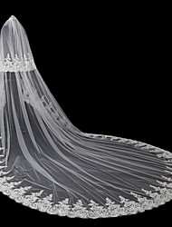 cheap -Two-tier Modern Style / Accessories / Flower Style Wedding Veil Blusher Veils / Chapel Veils with Appliques Tulle / Angel cut / Waterfall / Lace Applique Edge