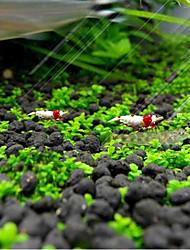 Недорогие -Аквариум Оформление аквариума Водное растение Искусственные растения Цвет отправляется в случайном порядке Мини Украшение 1 комплект 6*3 cm