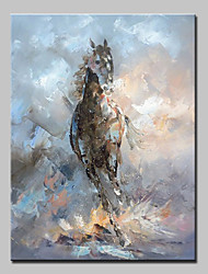 cheap -Mintura® Hand-Painted Abstract Horse Animal Oil Paintings On Canvas Modern Wall Art Picture For Home Decoration Ready To Hang With Stretched Frame