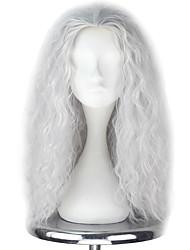 cheap -Cosplay Wigs Men's Women's 22 inch Heat Resistant Fiber Silver Anime