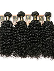 cheap -4 Bundles Brazilian Hair Kinky Curly Human Hair Natural Color Hair Weaves / Hair Bulk Human Hair Weaves Human Hair Extensions / 8A
