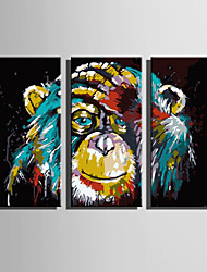 cheap -Print Rolled Canvas Prints Modern Three Panels Art Prints