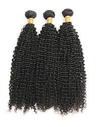 cheap -3 Bundles Hair Weaves Brazilian Hair Kinky Curly Human Hair Extensions Remy Human Hair Natural Color Hair Weaves / Hair Bulk / 10A