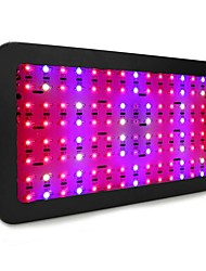cheap -Grow Light LED Plant Growing Light LED Plant Grow Light Full Spectrum 85-265V 240W 120 LED Beads LED Panel Lights Red Indoor Plants Growbox Greenhouse