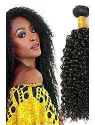 cheap -4 Bundles Peruvian Hair Curly Human Hair Natural Color Hair Weaves / Hair Bulk Human Hair Extensions Natural Color Human Hair Weaves Extention Hot Sale Human Hair Extensions / 8A