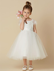 cheap -A-Line Knee Length Wedding / First Communion Flower Girl Dresses - Lace / Tulle Short Sleeve Scoop Neck with Sash / Ribbon