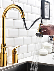 cheap -Kitchen faucet - Single Handle Two Holes Ti-PVD Pull-out / ­Pull-down / Tall / ­High Arc Widespread Contemporary Kitchen Taps / Brass