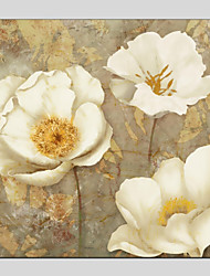 cheap -Print Stretched Canvas Prints - Floral / Botanical Modern Art Prints