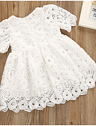 cheap -Baby Girls' Basic Daily Solid Colored Lace Short Sleeve Regular Above Knee Cotton Dress White / Toddler