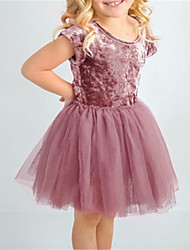 cheap -Toddler Girls' Basic Dusty Rose Floral Short Sleeve Dress Brown
