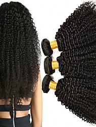 cheap -3 Bundles Malaysian Hair Kinky Curly Human Hair Unprocessed Human Hair Natural Color Hair Weaves / Hair Bulk Hair Care Bundle Hair 8-28 inch Natural Color Human Hair Weaves Fashionable Design Soft