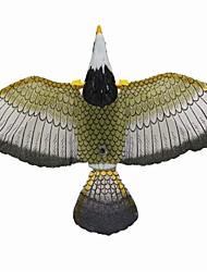 Kites & Accessories