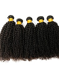 cheap -3 Bundles Indian Hair Kinky Curly Human Hair Unprocessed Human Hair 300 g Natural Color Hair Weaves / Hair Bulk Extension Bundle Hair 8-28 inch Natural Color Human Hair Weaves Smooth Fashion Thick