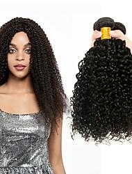 cheap -3 Bundles Indian Hair Kinky Curly Human Hair Unprocessed Human Hair Natural Color Hair Weaves / Hair Bulk Hair Care Bundle Hair 8-28 inch Natural Color Human Hair Weaves Smooth Sexy Lady Thick Human