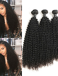 cheap -3 Bundles Indian Hair Kinky Curly Human Hair Human Hair Extensions 8-24 inch Human Hair Weaves Best Quality New Arrival Hot Sale Human Hair Extensions / 8A