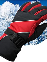 cheap -Winter Gloves Ski Gloves Men's Snowsports Full Finger Gloves Winter Waterproof Windproof Breathable Cloth Skiing Snowboarding