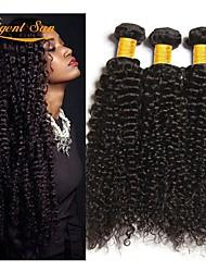 Недорогие -3 Связки Бразильские волосы Кудрявый Натуральные волосы 300 g Человека ткет Волосы Удлинитель Пучок волос 8-28 дюймовый Естественный цвет Ткет человеческих волос Лучшее качество 100 / 8A