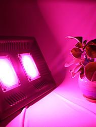 cheap -BRELONG 100W Ultra-Thin LED Full-Light Plant Growth Lamp 1 pc