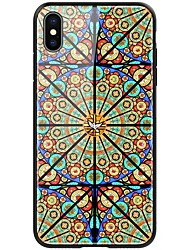 cheap -Nillkin Case For Apple iPhone XR / iPhone XS Max Shockproof / Pattern Back Cover Oil Painting Hard TPU / Tempered Glass for iPhone XR / iPhone XS Max