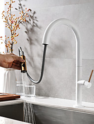 cheap -Kitchen faucet - Two Handles One Hole Painted Finishes Pull-out / Pull-down / Tall / High Arc Deck Mounted Contemporary Kitchen Taps