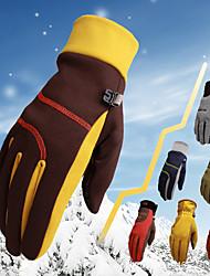 Недорогие -Зимние Муж. Жен. Снежные виды спорта Полный палец С защитой от ветра Дышащий Сохраняет тепло Микс Пешеходный туризм На открытом воздухе Мотоцикл