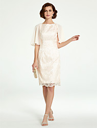 cheap -Sheath / Column Jewel Neck Knee Length Chiffon / Lace Sleeveless Mother of the Bride Dress with Lace 2020