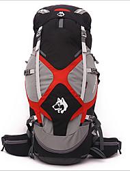 cheap -Jungle King 65 L Rucksack Waterproof Breathable Wear Resistance Outdoor Hiking Nylon Black Green Blue